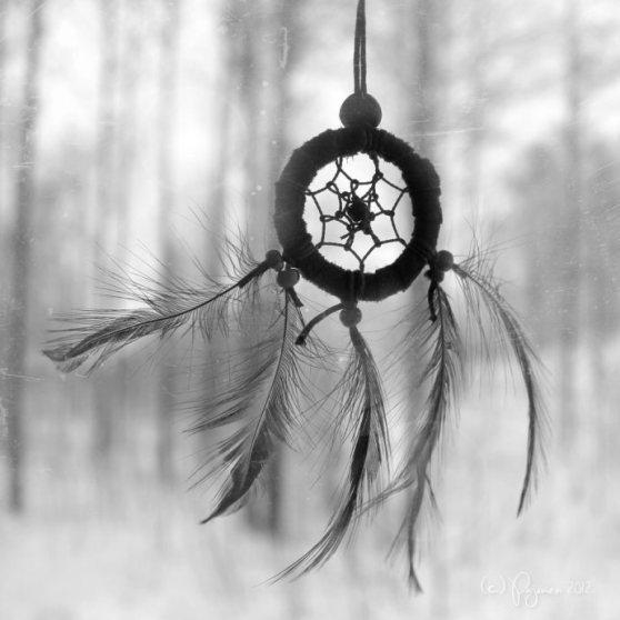 winter_dreams_by_pajunen-d5jk0mx
